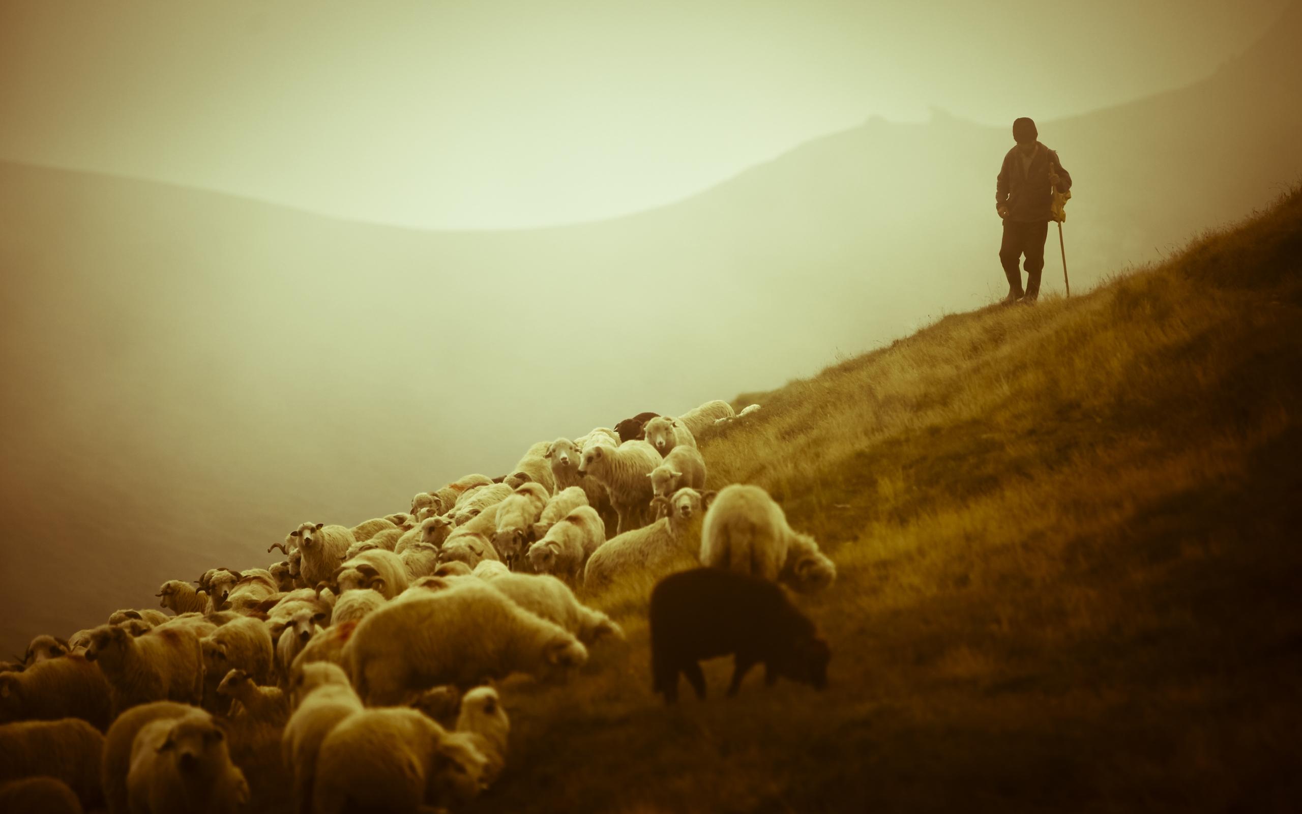 Великий пост. Евангелие от Иоанна, главы 9-10