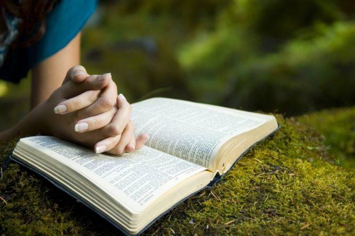 Храни благоразумие и рассудительность