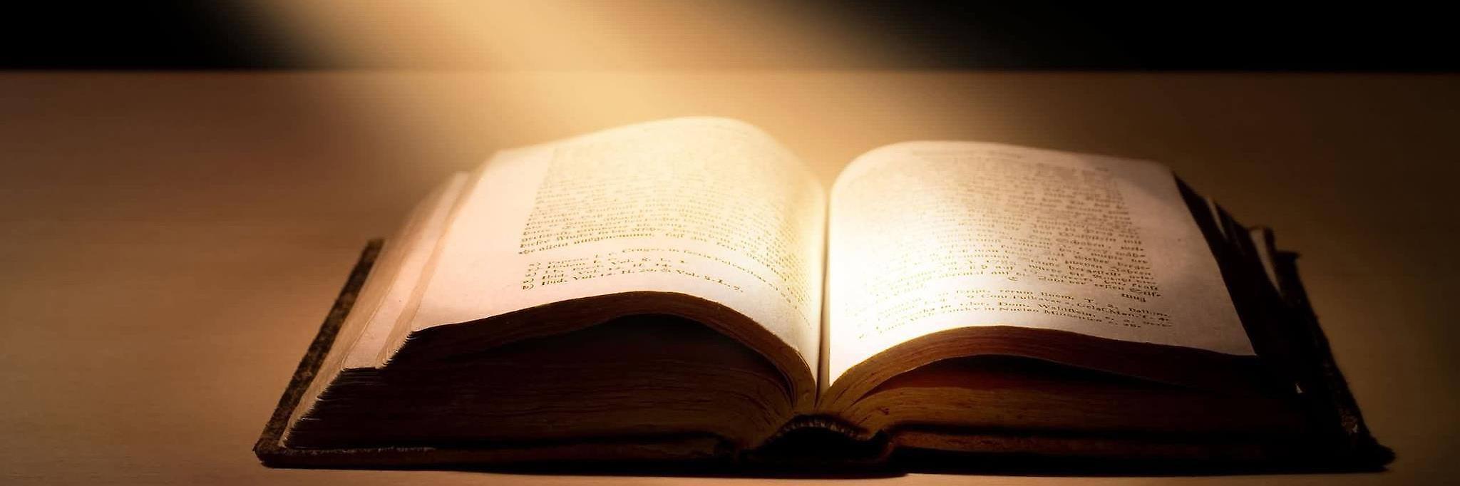 Отзывы о рассылке «Как читать Библию»